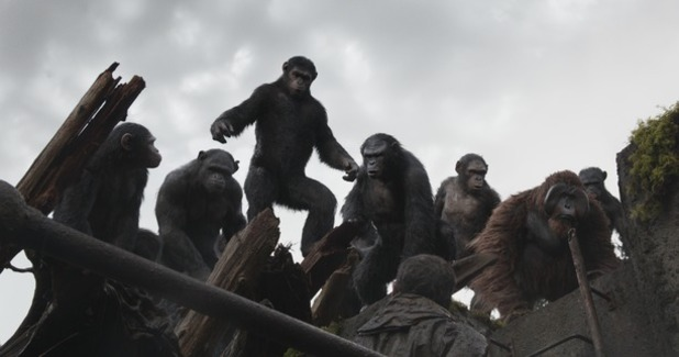 Dawn of the planet of the apes battle scene-8000